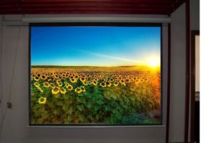 Projection Screens Projection Screen pictures & photos