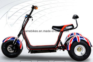 3 Wheel Electric Motorcycle with 1000W 60V/20ah pictures & photos