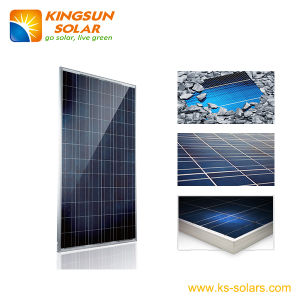 Poly Crystalline Solar Panel 260-310W pictures & photos