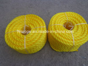 3 Strands Rope Plastic Rope Outside Good Quality pictures & photos