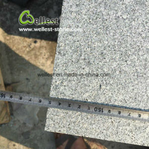 Chinese Granite G654 Flamed and Brushed Tile pictures & photos