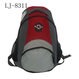 Leisure Bag for Sports Hiking Laptop Backpack pictures & photos