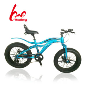 20 Inch Snow Bicycle Within Variable Speed for Adult pictures & photos