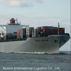 Competitive Ocean Freight Shipping Service From China to Baltimore, Md/Charleston, Sc/Houston, Tx/Miami, Fl, USA pictures & photos