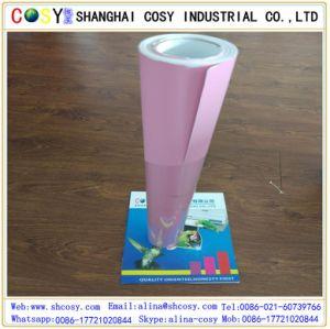 Die Cut Waterproof PVC Vinyl Car Body Side Sticker Design pictures & photos