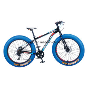 "26""Fat Bike/Bicycle, Fat Bike/Bicycle 7-SPD (YD16FT-26534) pictures & photos"
