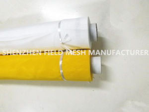 43t Polyester Silk Mesh (FM015-PP66) pictures & photos