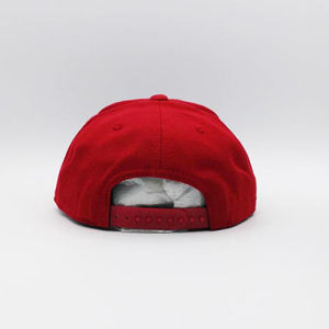 Custom PU Peak Fashion Hip-Hop Cap (ACEW006) pictures & photos
