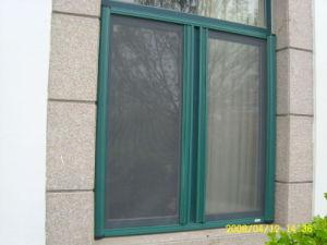 Luxury Alloy Window Screen pictures & photos