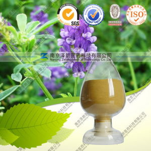 Natural High Quality Rosemary Extract Rosmarinic Acid pictures & photos