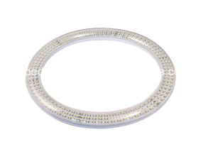 205mm G10q LED Circular Tube with Frosted Cover LED Ring Light pictures & photos