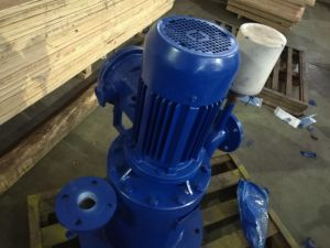 Electrical Horizontal Self-Priming Sewage Pump pictures & photos
