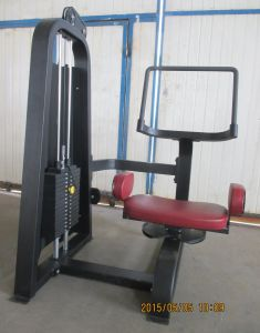 Popular Precor Fitness Equipment / Leg Extension (SD02) pictures & photos