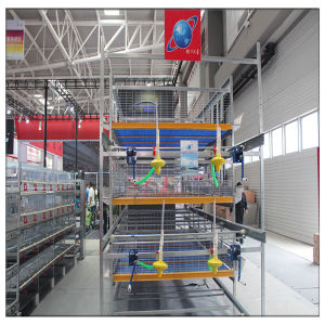 Professional Broiler Poultry Shed Design H Type Chicken Farm Battery Cage pictures & photos