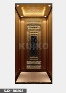 Kjx-BS203 Villa Elevatorwith Mirror Car Design pictures & photos