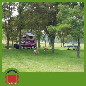 Car Shelt Rof Top Tent for Glass Camping pictures & photos