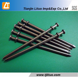 Good Quality Q195 Common Round Wire Construction Nails pictures & photos