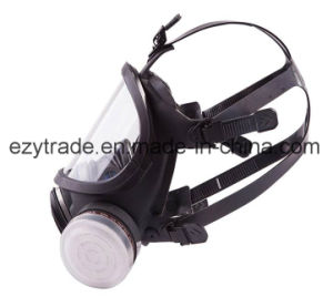 2 in 1 Fuction Full Face Respirator Gas Mask Facepiece Spraying Painting pictures & photos