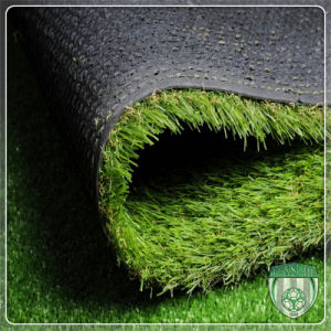 Various Style Artificial Synthetic Lawn for Commercil Activity pictures & photos