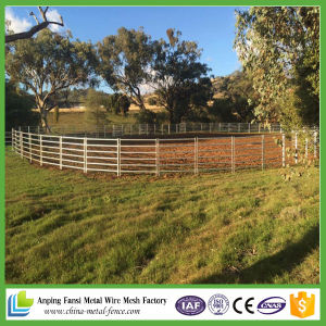 Australia Standard Heavy Duty Oval Rali Galvanzied Cattle Panel pictures & photos