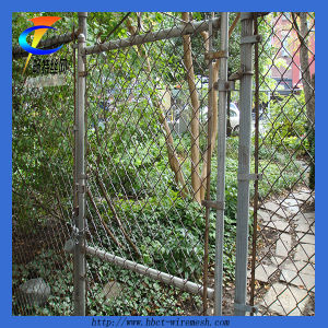 PVC&Galvanized Chain Link Fence pictures & photos