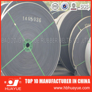 ISO Standard High Temperature Resitant Conveyor Belt pictures & photos