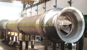 Vertical Turbine Pump of Efficient pictures & photos
