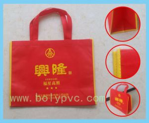 Non-Woven Album Bag/Shopping Bag/Gift Bag/Promotion Bag