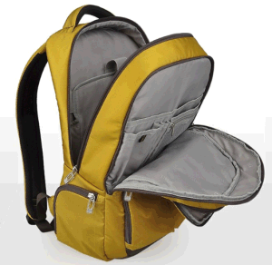 Backpack for 15 Inch Laptop with High Quality (SB2122) pictures & photos
