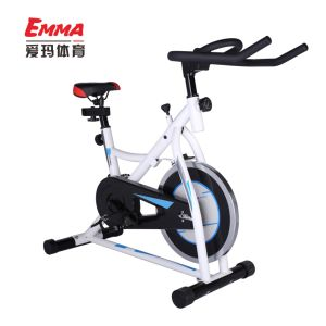 Exercise Bike Fitness Equipment (AM-S9000) pictures & photos