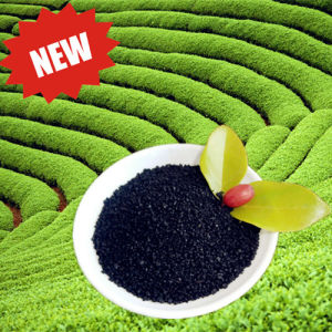 Water Soluble Organic Fertilizer Potassium Humate for Agriculture pictures & photos