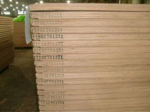 Keruing Container Flooring Plywood pictures & photos