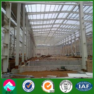 Customized Light Steel Warehouse /Steel Structure Warehouse (XGZ-SSW 421) pictures & photos