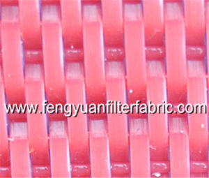 Paper Machine Plain Woven Flat-Yarn Dryer Fabric Mesh Belt pictures & photos