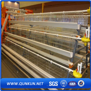 Chicken Cage for Poultry Farm for Nigeria pictures & photos