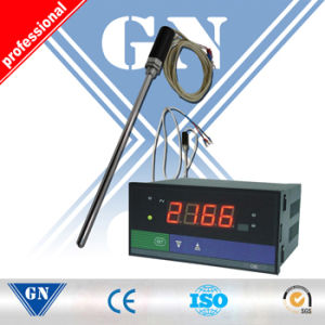Industrial Temperature Monitoring pictures & photos