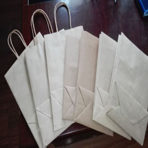 Brown Kraft Paper Grocery Bag with Greaseproof Paper pictures & photos