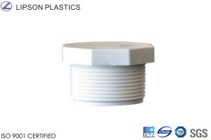 PVC Male Thread Plug Pipe Fitting pictures & photos