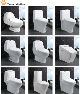 Pure White Durable Sanitary Ware Two Piece Toilets (EDA66153) pictures & photos