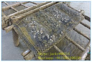Oyster Bags/Cage for Oysters Growing pictures & photos