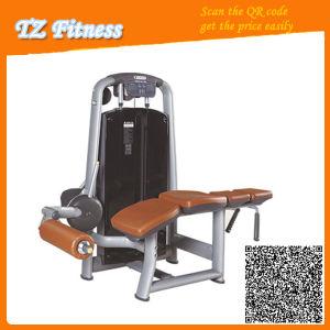 Prone Leg Curl Tz-6044 / Gym Equipment/Fitness Equipment pictures & photos