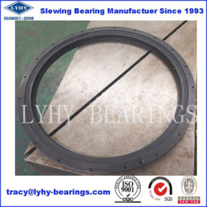Flange Type Slewing Bearing with Black Oxide Coating 010.20.841 pictures & photos
