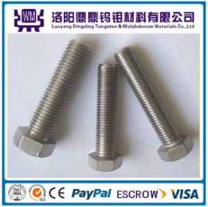 High Quality Molybdenum Bolts and Screws pictures & photos
