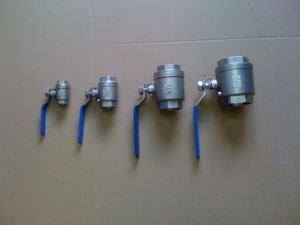 Professional Stainless Steel Water Supply Spare Parts Check Valve pictures & photos