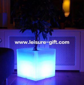 Fo-9521 Illuminated Flower Pots Garden Decor pictures & photos