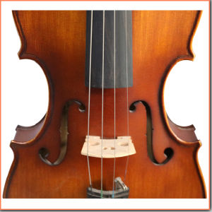 Handmade Mate Coffee Color Fiddle Violin pictures & photos