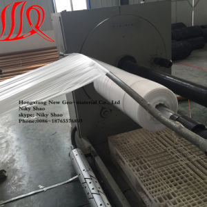 HDPE Geomembrane/LDPE Geomembrane/Pond Liner pictures & photos