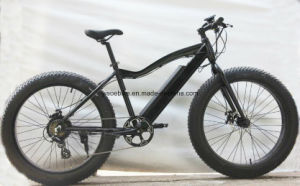 New 2017 Finland Like Best Lithium Polymer Battery 10 Speed Electric Bike 500W 26X4′′fat Tire pictures & photos