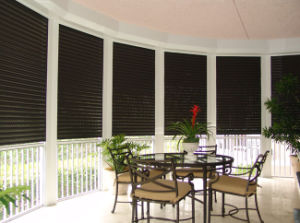 Professional Hurricane Storm Security Roller Shutter pictures & photos