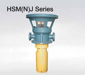 Hsm (N) J Series Three Screw Pump for Hydro Power pictures & photos